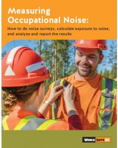 Measuring Occupational Noise: How to do noise surveys, calculate exposure to noise, and analyze and report the results